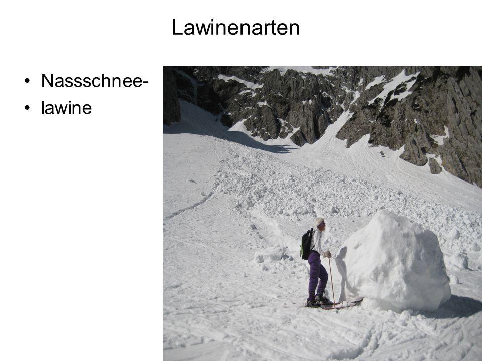Lawinenarten Nassschnee- lawine