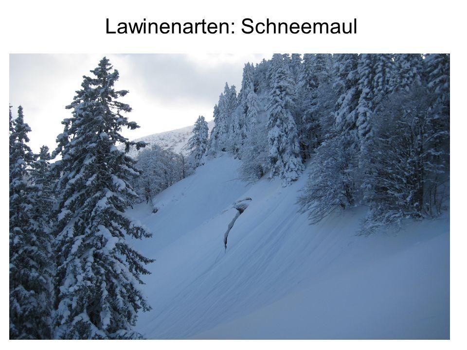 Lawinenarten: Schneemaul