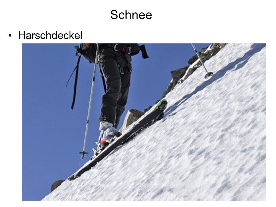 Schnee Harschdeckel