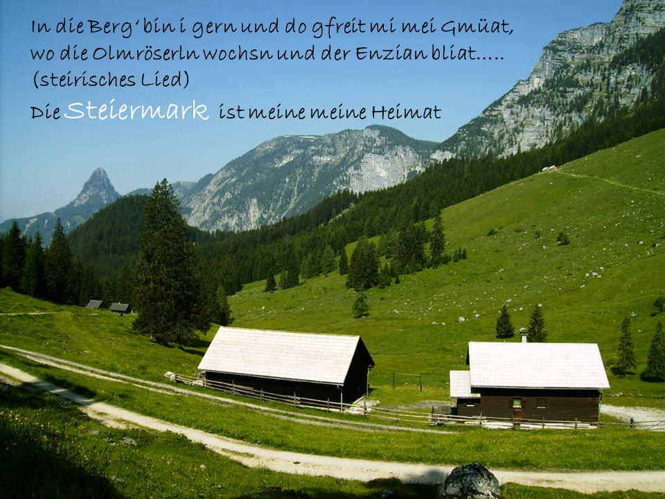 In die Berg' bin i gern und do gfreit mi mei Gmüat, wo die Olmröserln wochsn und der Enzian bliat…..