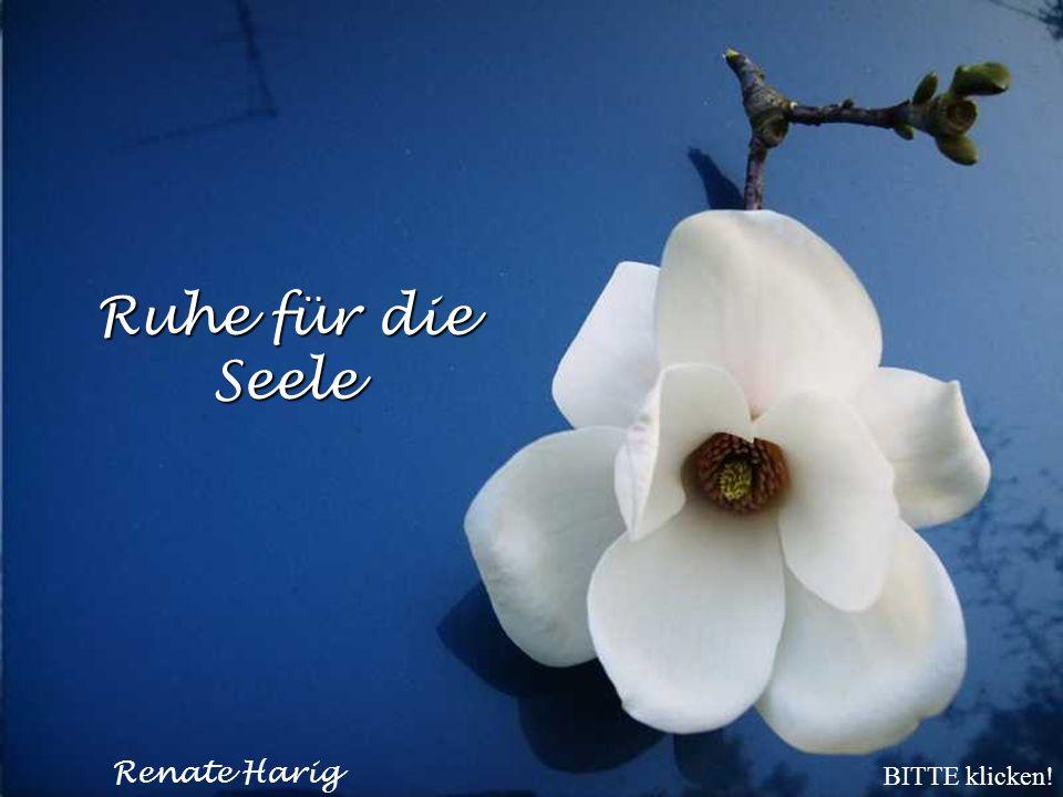 Ruhe für die Seele © Renate Harig BITTE klicken!