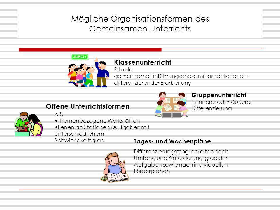 Mögliche Organisationsformen des Gemeinsamen Unterrichts
