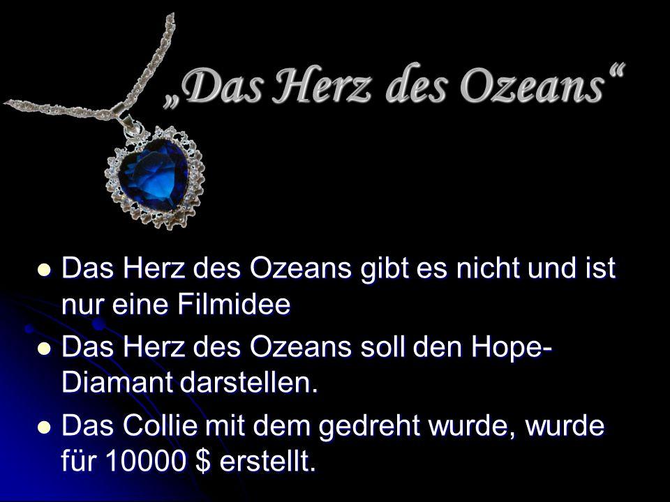 """""""Das Herz des Ozeans Das Herz des Ozeans gibt es nicht und ist nur eine Filmidee. Das Herz des Ozeans soll den Hope-Diamant darstellen."""
