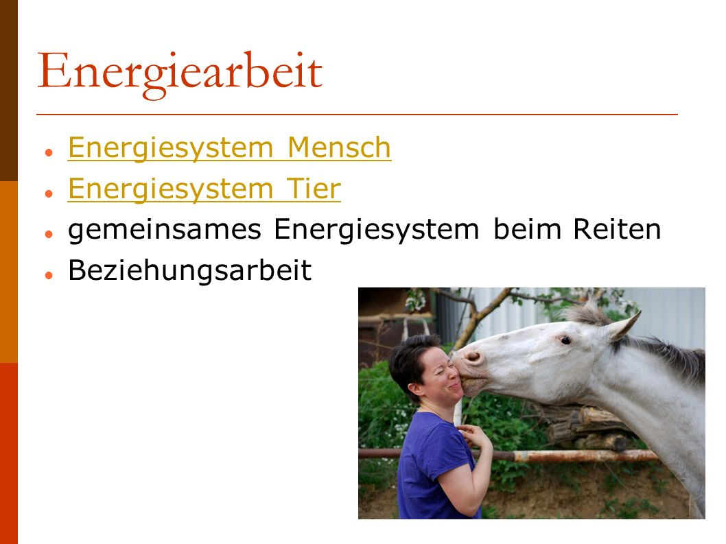 Energiearbeit Energiesystem Mensch Energiesystem Tier
