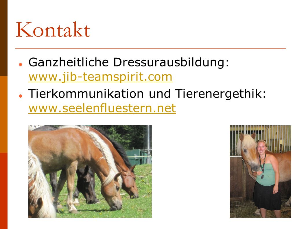 Kontakt Ganzheitliche Dressurausbildung: www.jib-teamspirit.com