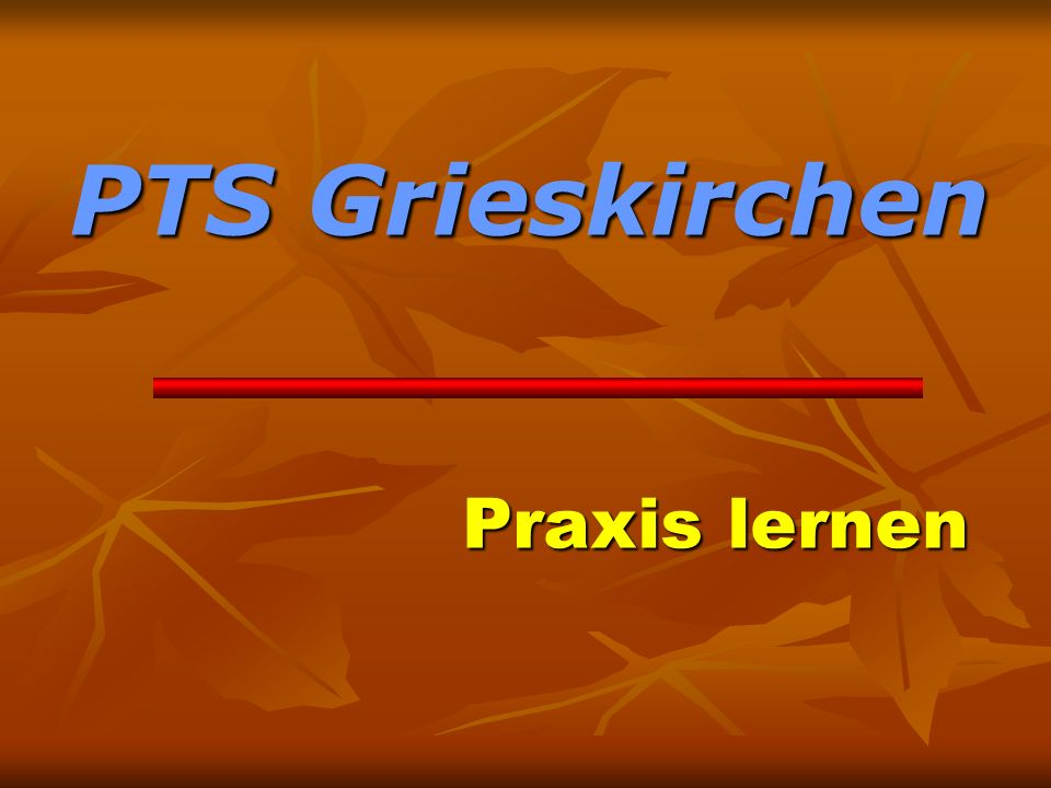 PTS Grieskirchen Praxis lernen