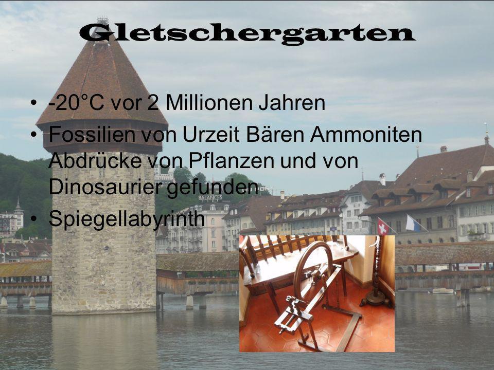 Gletschergarten -20°C vor 2 Millionen Jahren