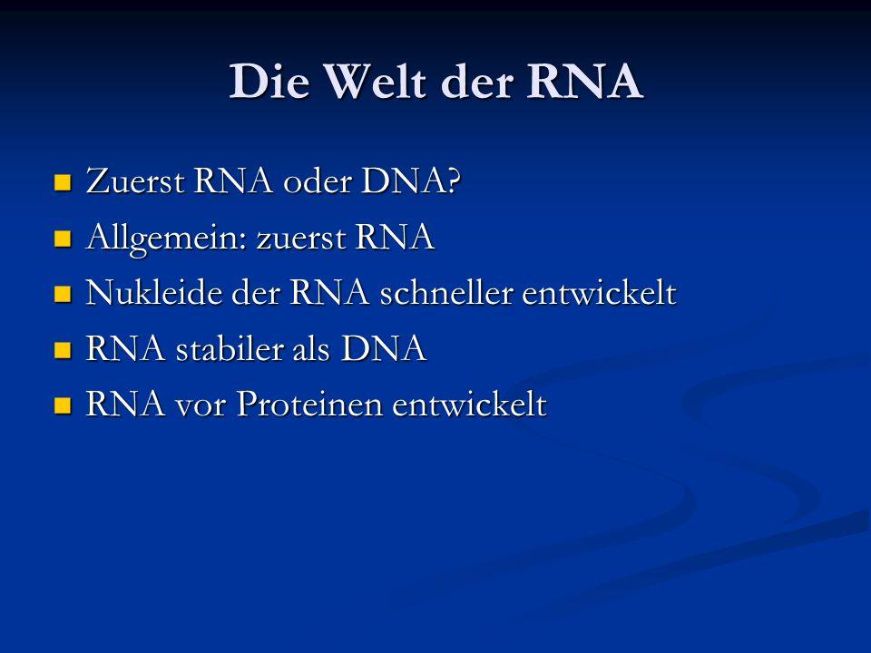 Die Welt der RNA Zuerst RNA oder DNA Allgemein: zuerst RNA
