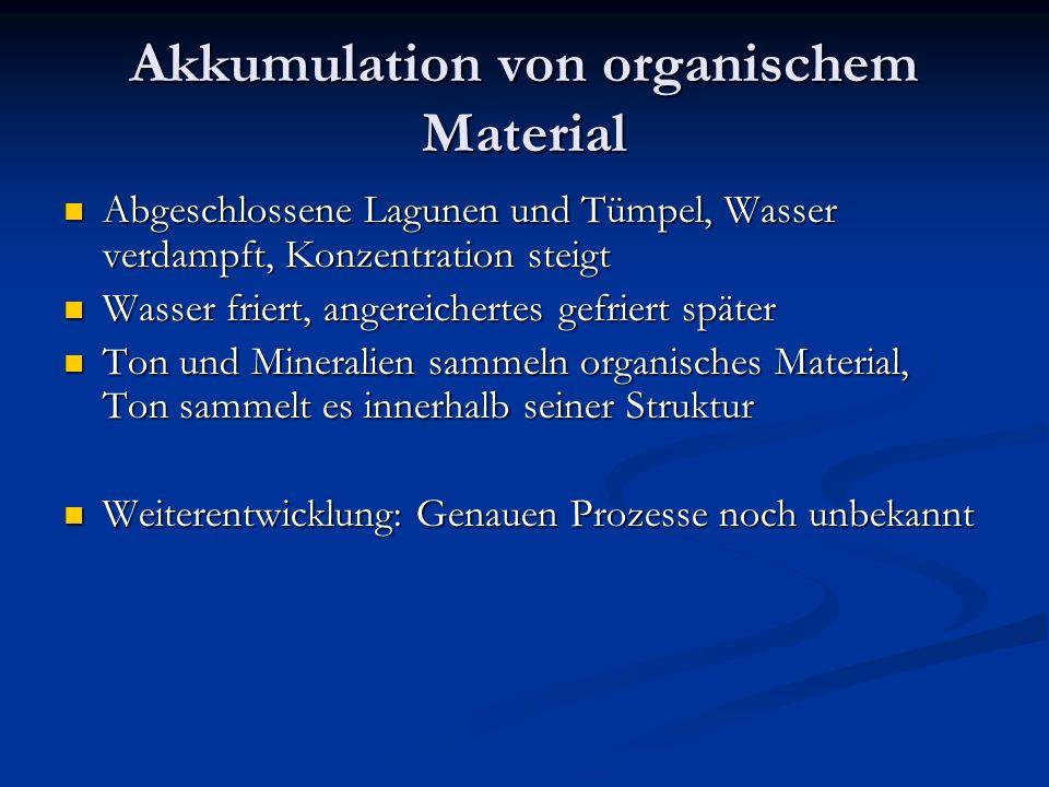 Akkumulation von organischem Material