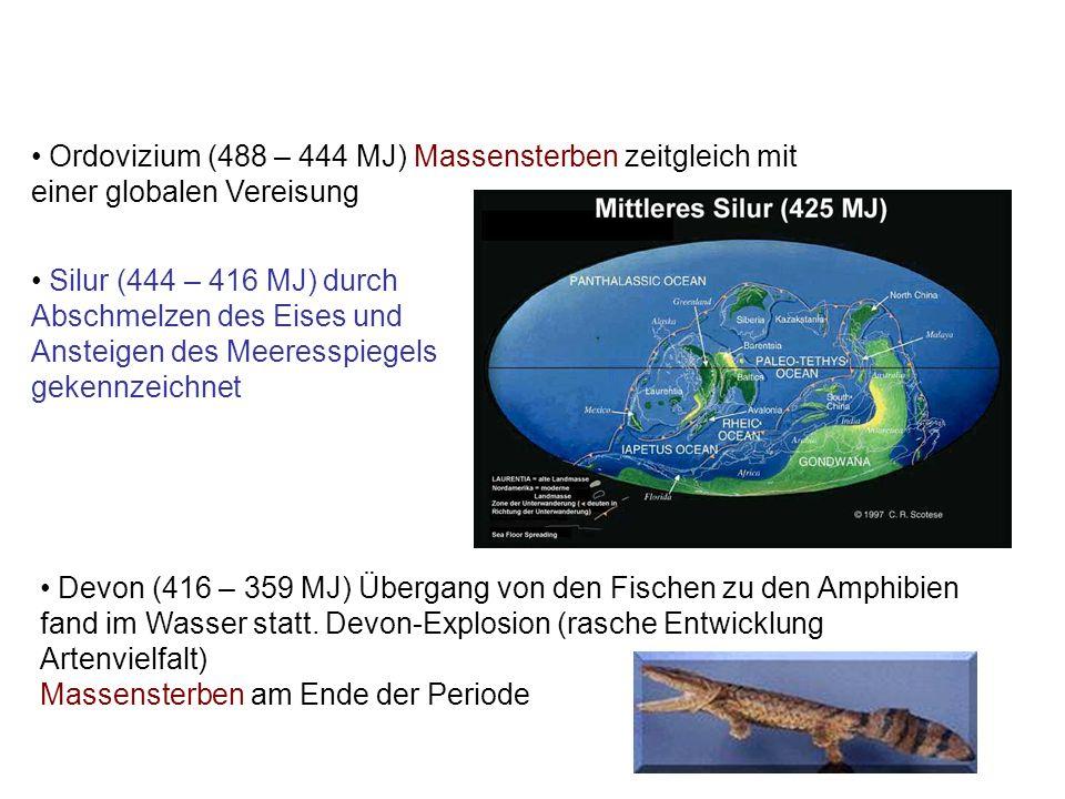Ordovizium (488 – 444 MJ) Massensterben zeitgleich mit einer globalen Vereisung