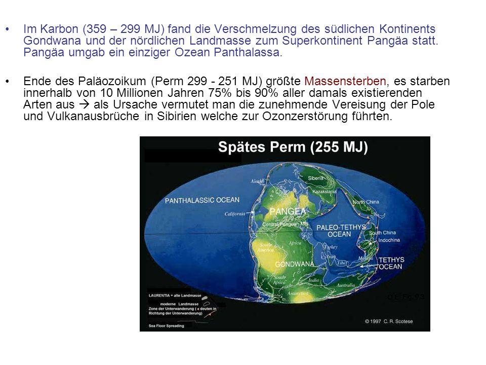 Im Karbon (359 – 299 MJ) fand die Verschmelzung des südlichen Kontinents Gondwana und der nördlichen Landmasse zum Superkontinent Pangäa statt. Pangäa umgab ein einziger Ozean Panthalassa.