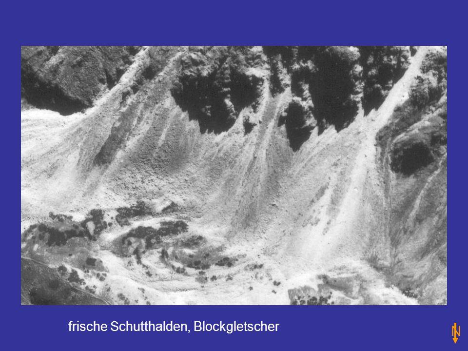 frische Schutthalden, Blockgletscher