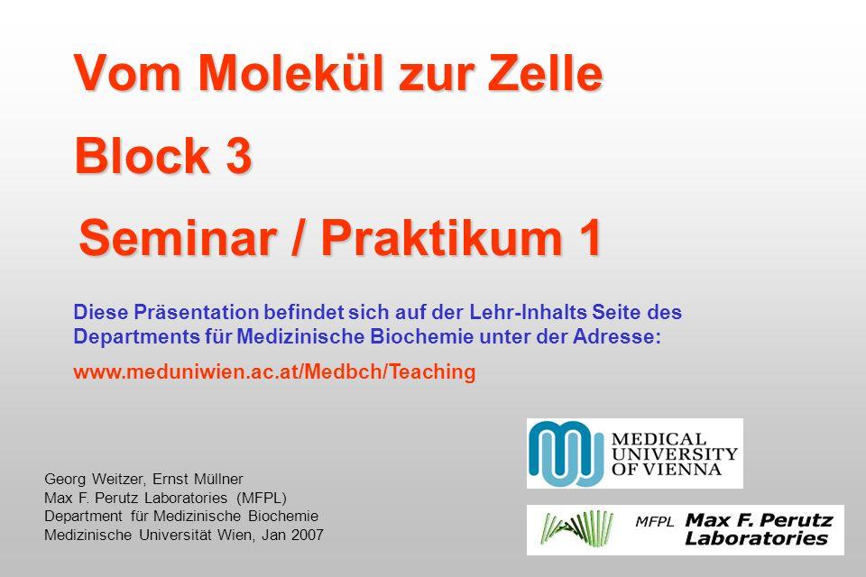 Vom Molekül zur Zelle Block 3 Seminar / Praktikum 1
