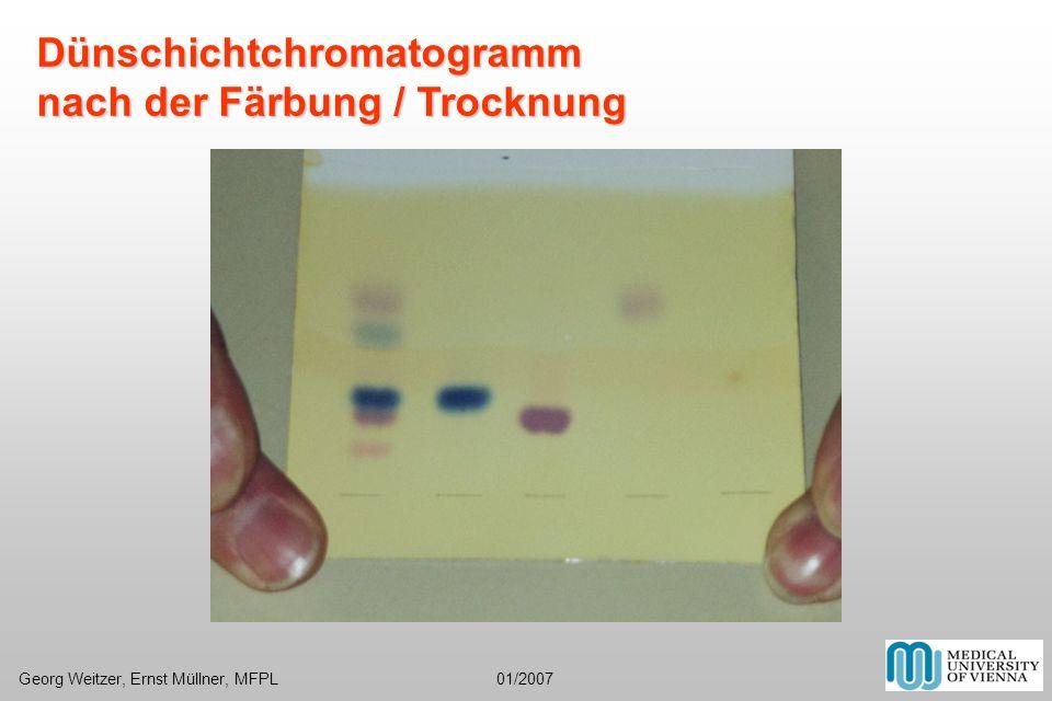 Dünschichtchromatogramm nach der Färbung / Trocknung