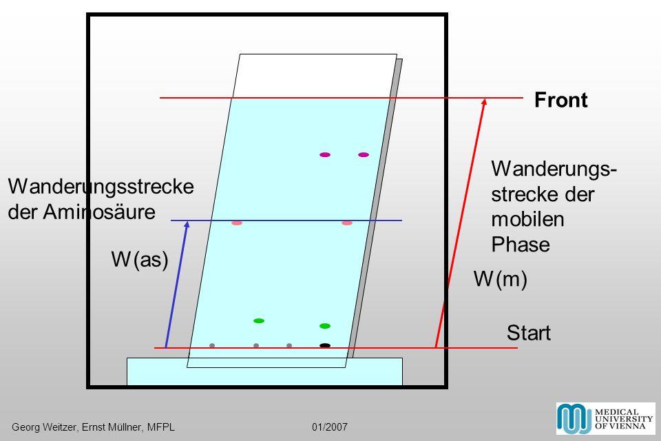 Wanderungs- strecke der mobilen Phase Wanderungsstrecke der Aminosäure