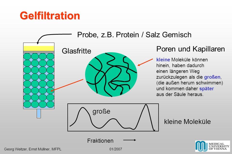 Gelfiltration Probe, z.B. Protein / Salz Gemisch Poren und Kapillaren