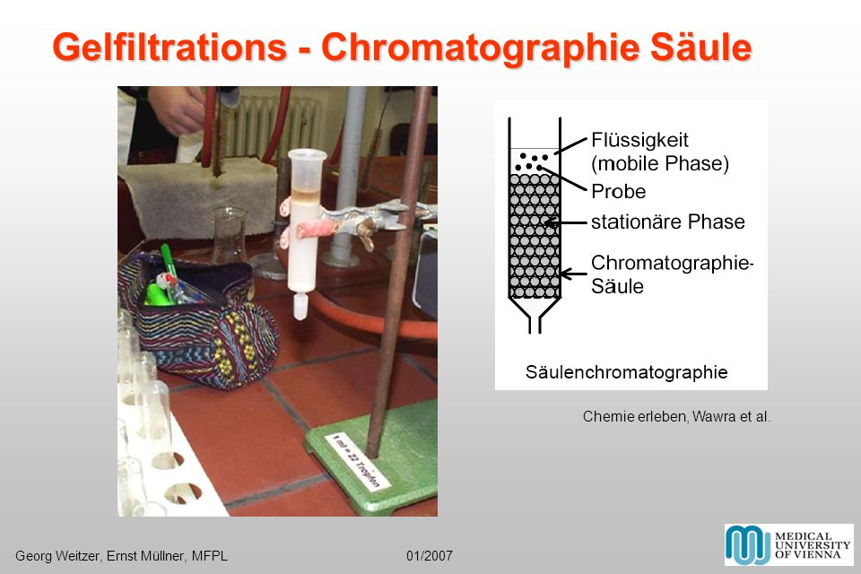 Gelfiltrations - Chromatographie Säule