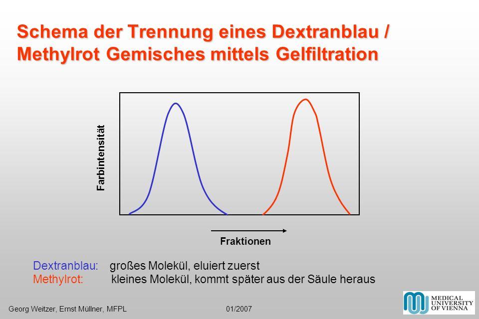 Schema der Trennung eines Dextranblau / Methylrot Gemisches mittels Gelfiltration