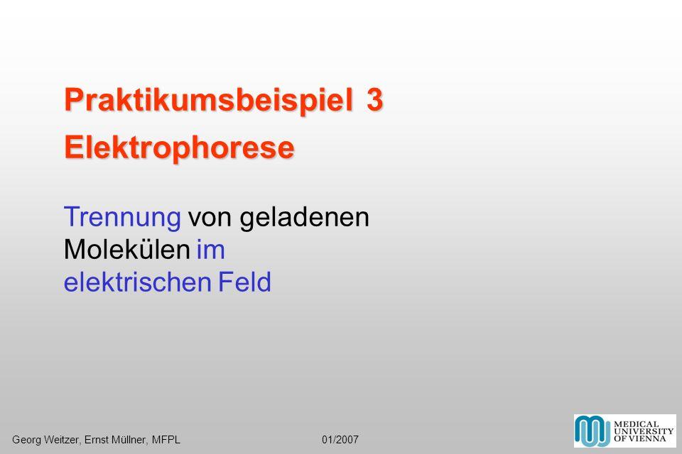 Praktikumsbeispiel 3 Elektrophorese