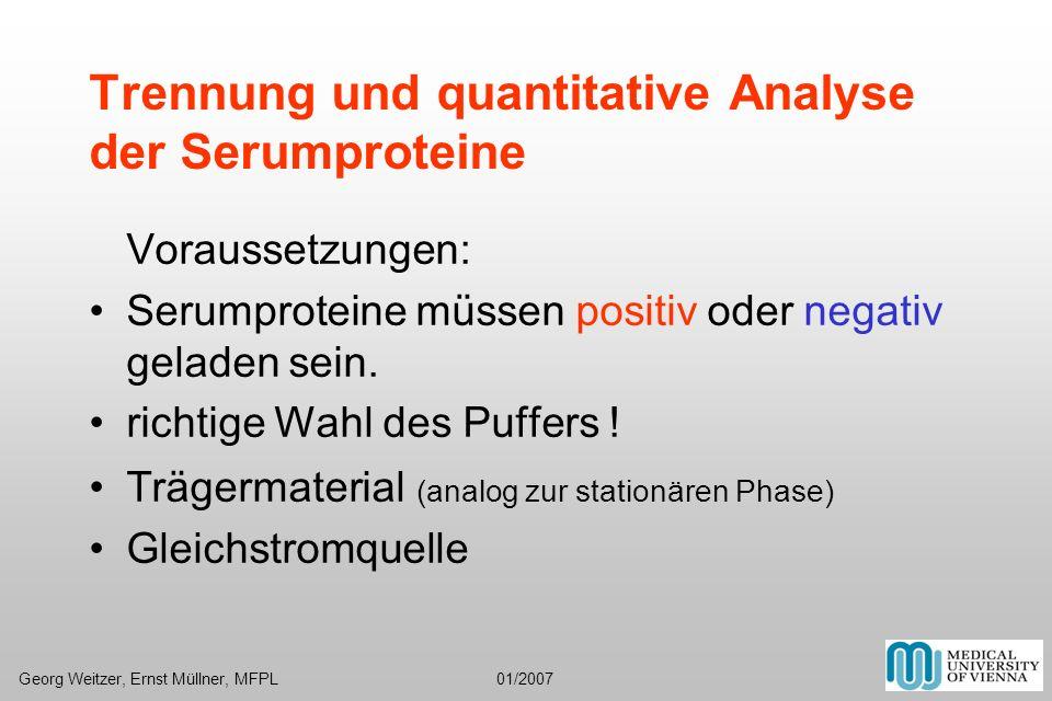 Trennung und quantitative Analyse der Serumproteine