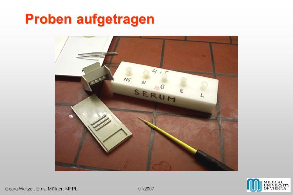 Proben aufgetragen Georg Weitzer, Ernst Müllner, MFPL 01/2007.
