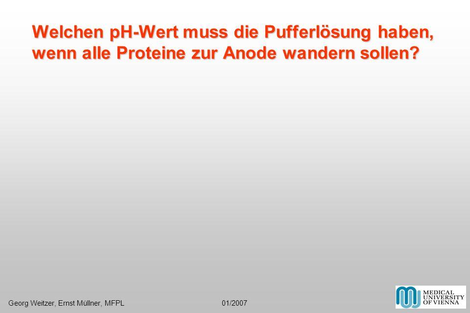 Welchen pH-Wert muss die Pufferlösung haben, wenn alle Proteine zur Anode wandern sollen