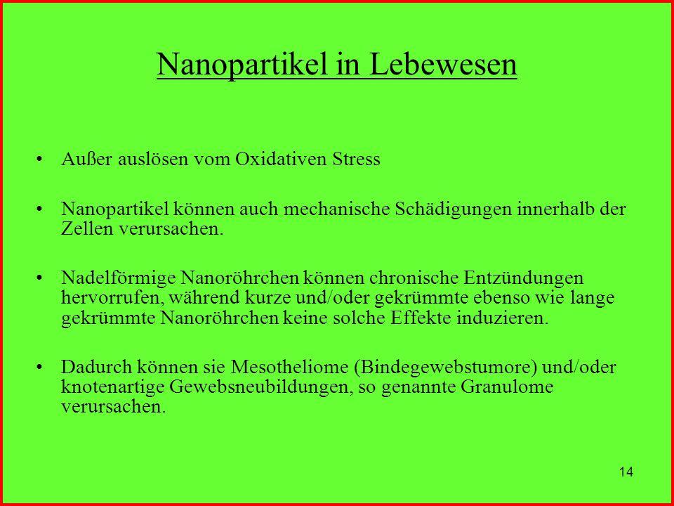 Nanopartikel in Lebewesen