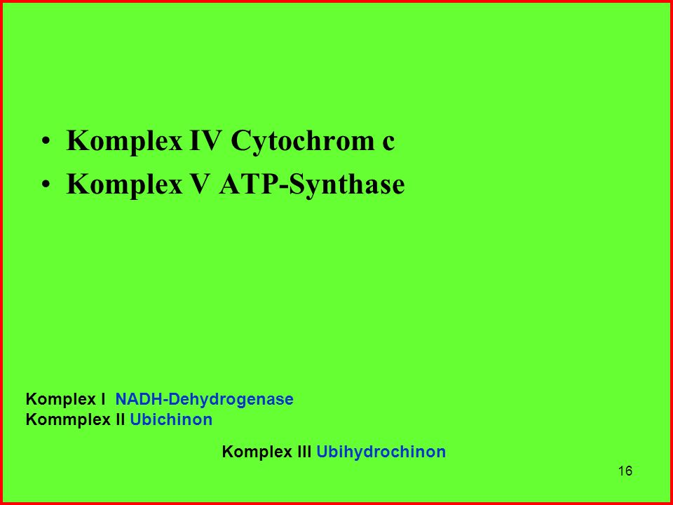Komplex V ATP-Synthase