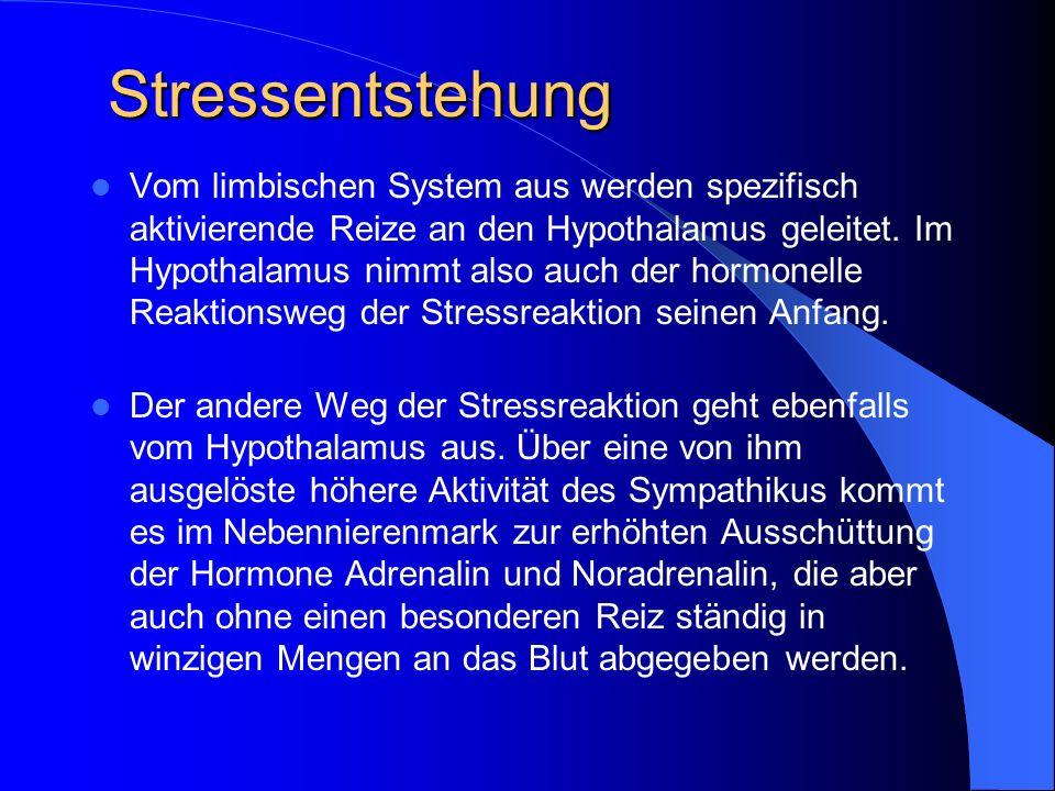 Stressentstehung
