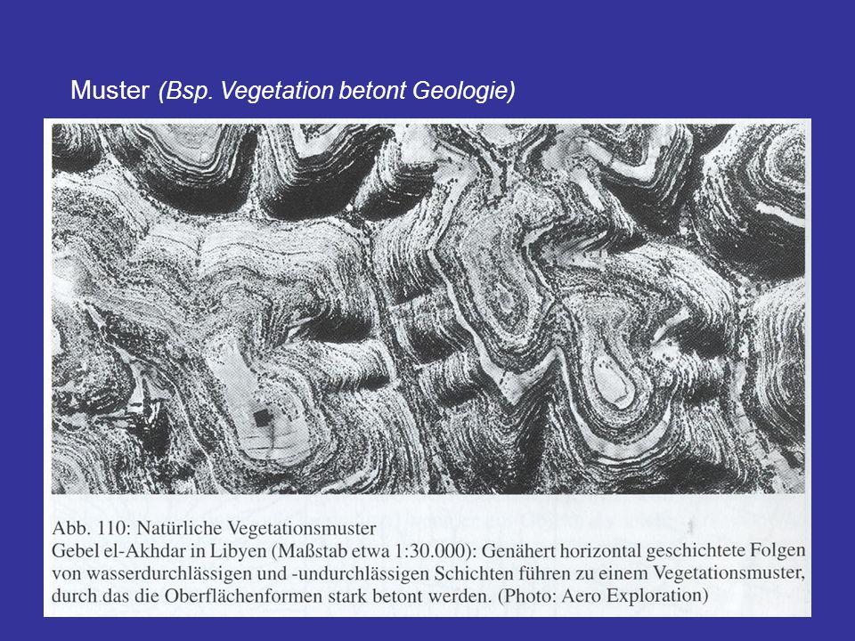 Muster (Bsp. Vegetation betont Geologie)
