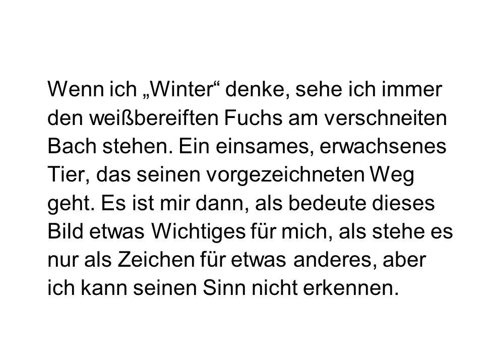 """Wenn ich """"Winter denke, sehe ich immer den weißbereiften Fuchs am verschneiten Bach stehen."""