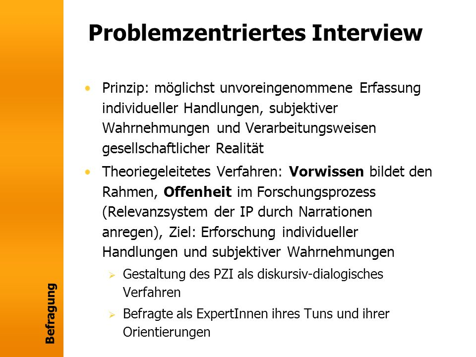 Problemzentriertes Interview