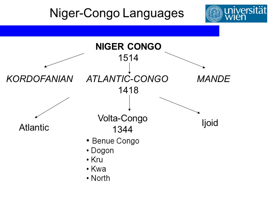 Niger-Congo Languages