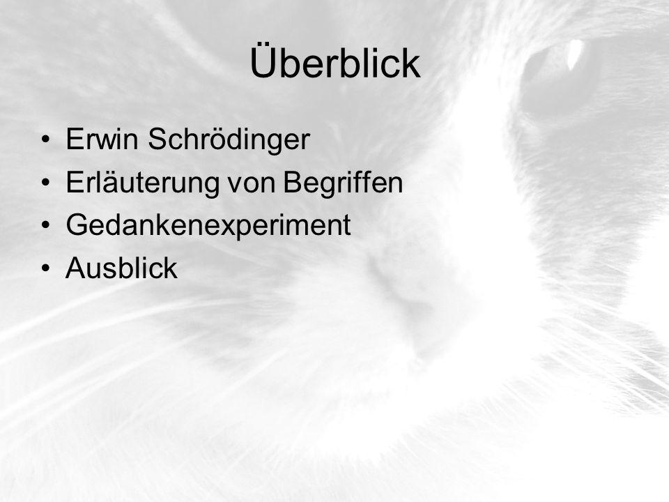 Überblick Erwin Schrödinger Erläuterung von Begriffen
