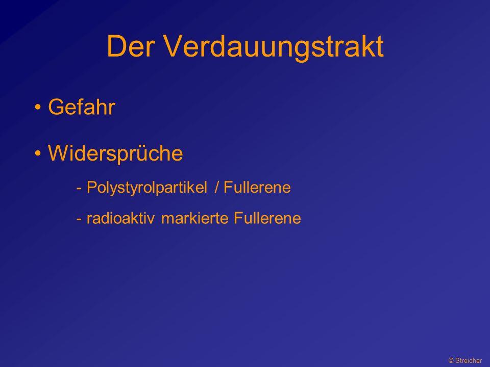 Der Verdauungstrakt Gefahr Widersprüche Polystyrolpartikel / Fullerene