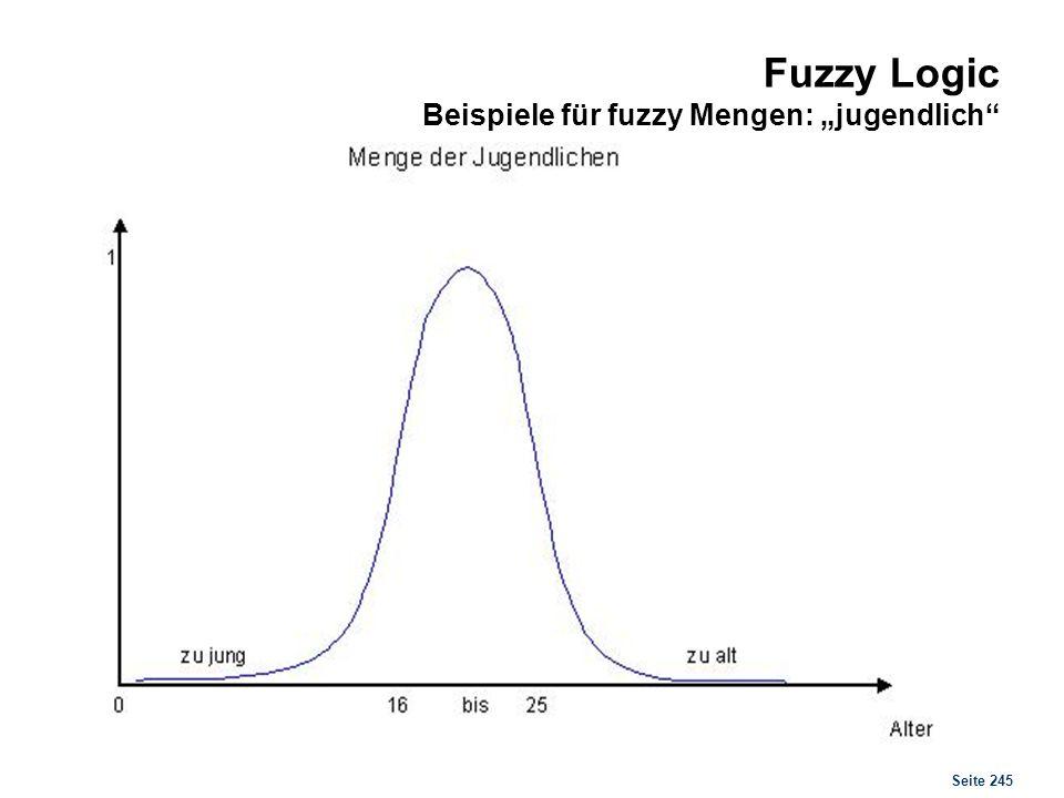 Fuzzy Logic Notation und Darstellungsformen