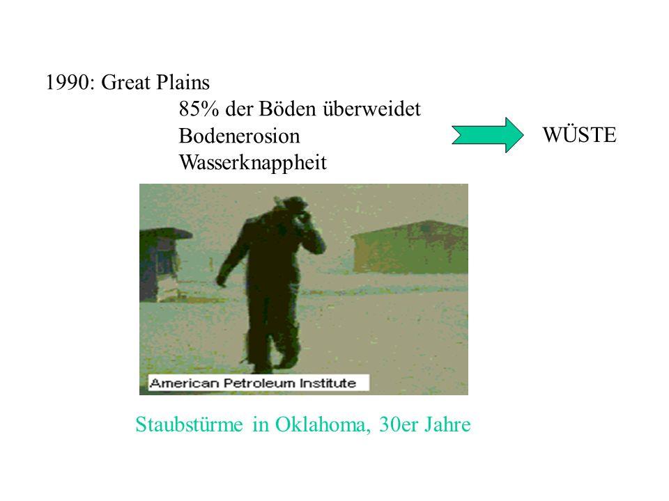 1990: Great Plains 85% der Böden überweidet. Bodenerosion.