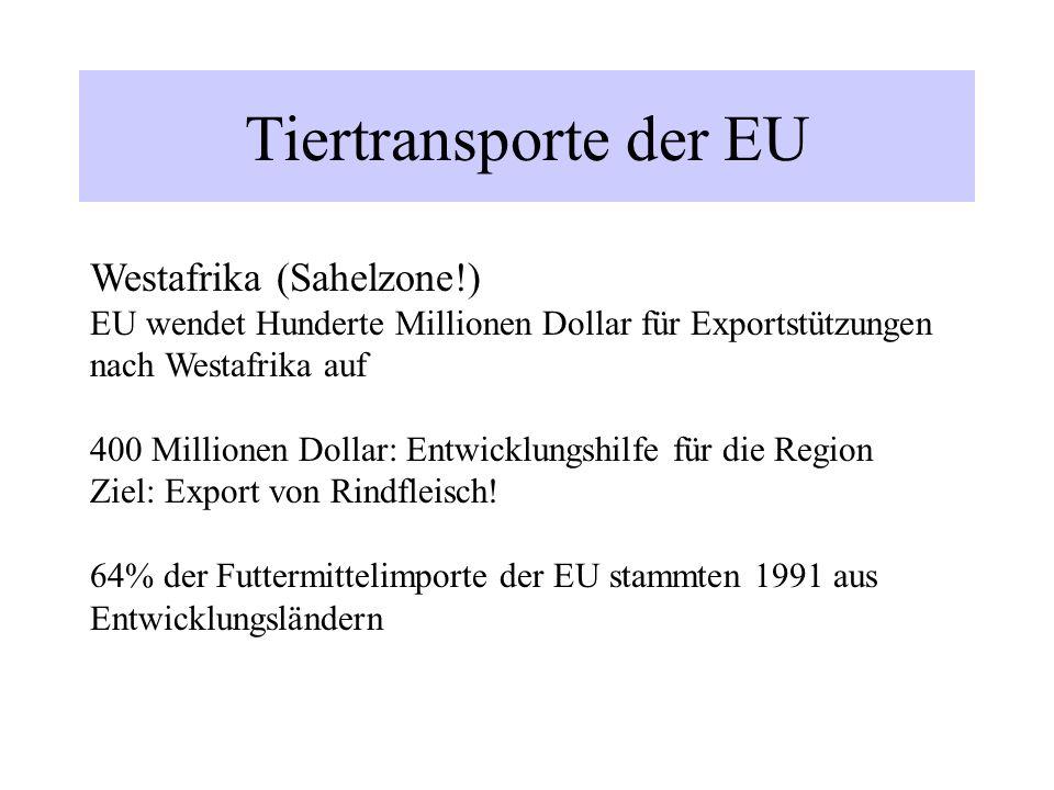 Tiertransporte der EU Westafrika (Sahelzone!)