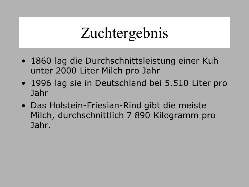 Zuchtergebnis 1860 lag die Durchschnittsleistung einer Kuh unter 2000 Liter Milch pro Jahr. 1996 lag sie in Deutschland bei 5.510 Liter pro Jahr.