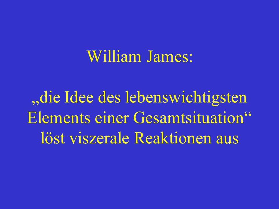 """William James: """"die Idee des lebenswichtigsten Elements einer Gesamtsituation löst viszerale Reaktionen aus"""