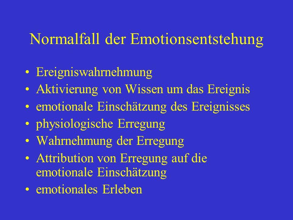 Normalfall der Emotionsentstehung
