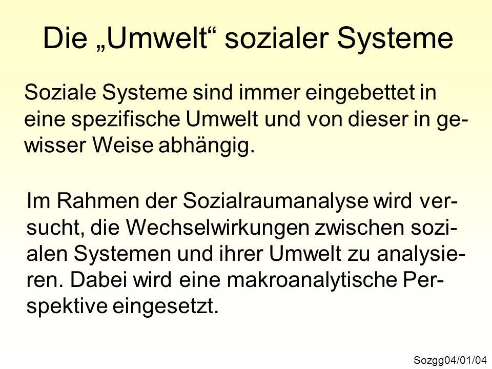 """Die """"Umwelt sozialer Systeme"""