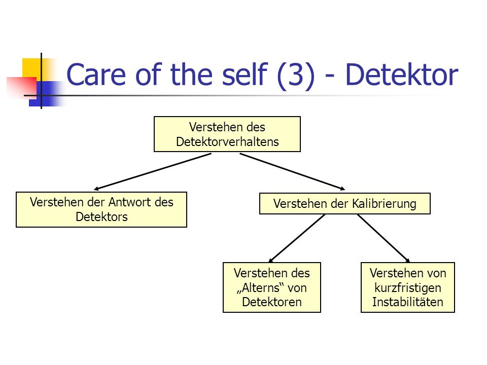 Care of the self (3) - Detektor