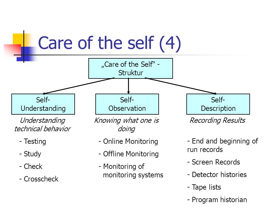 "Care of the self (4) ""Care of the Self - Struktur Self- Understanding"