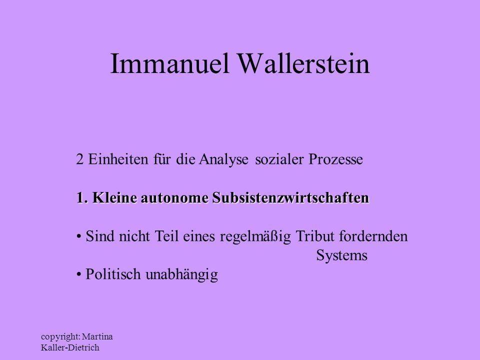 Immanuel Wallerstein 2 Einheiten für die Analyse sozialer Prozesse