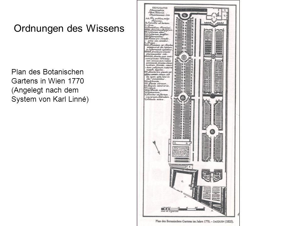 Ordnungen des Wissens Plan des Botanischen Gartens in Wien 1770