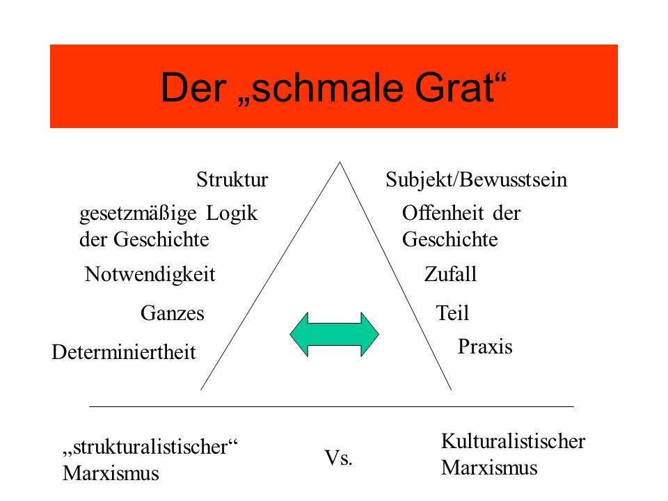 """Der """"schmale Grat Struktur Subjekt/Bewusstsein"""