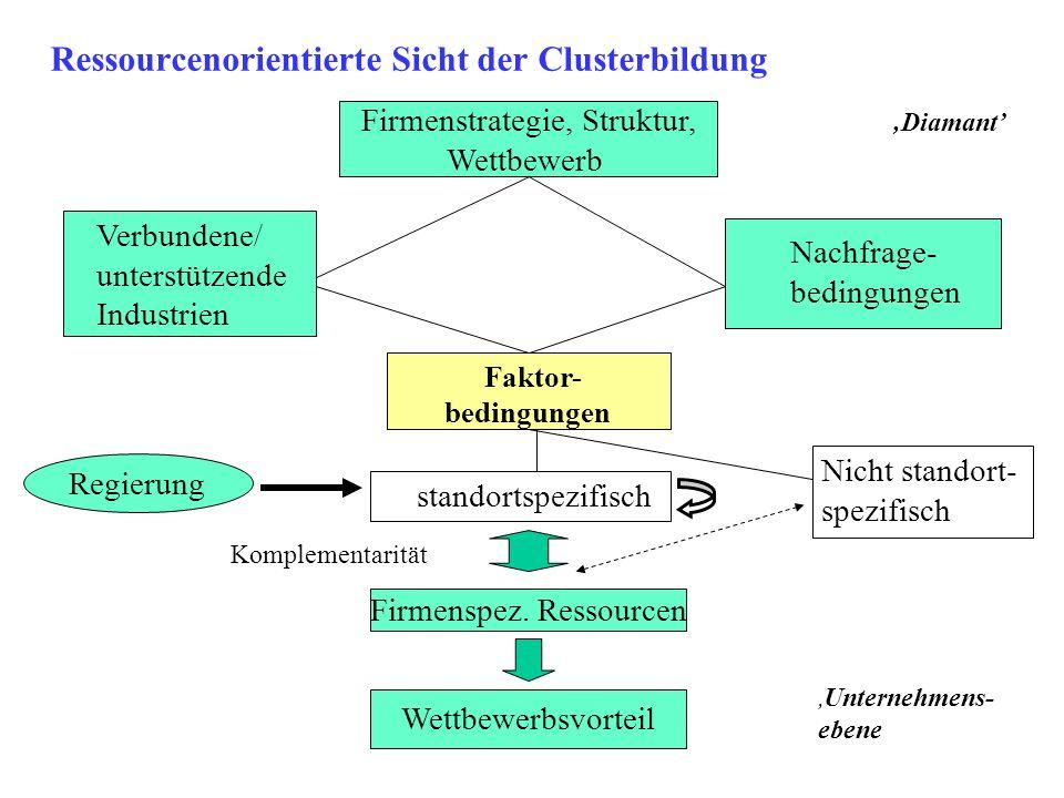 Ressourcenorientierte Sicht der Clusterbildung