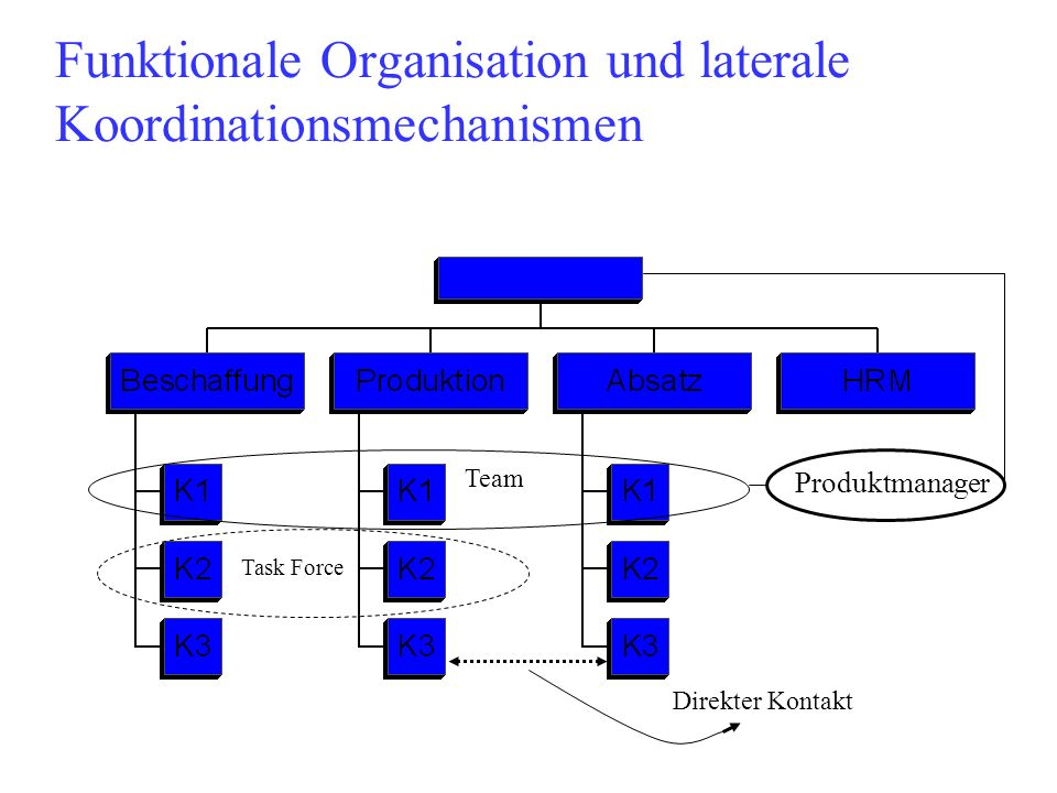 Funktionale Organisation und laterale Koordinationsmechanismen