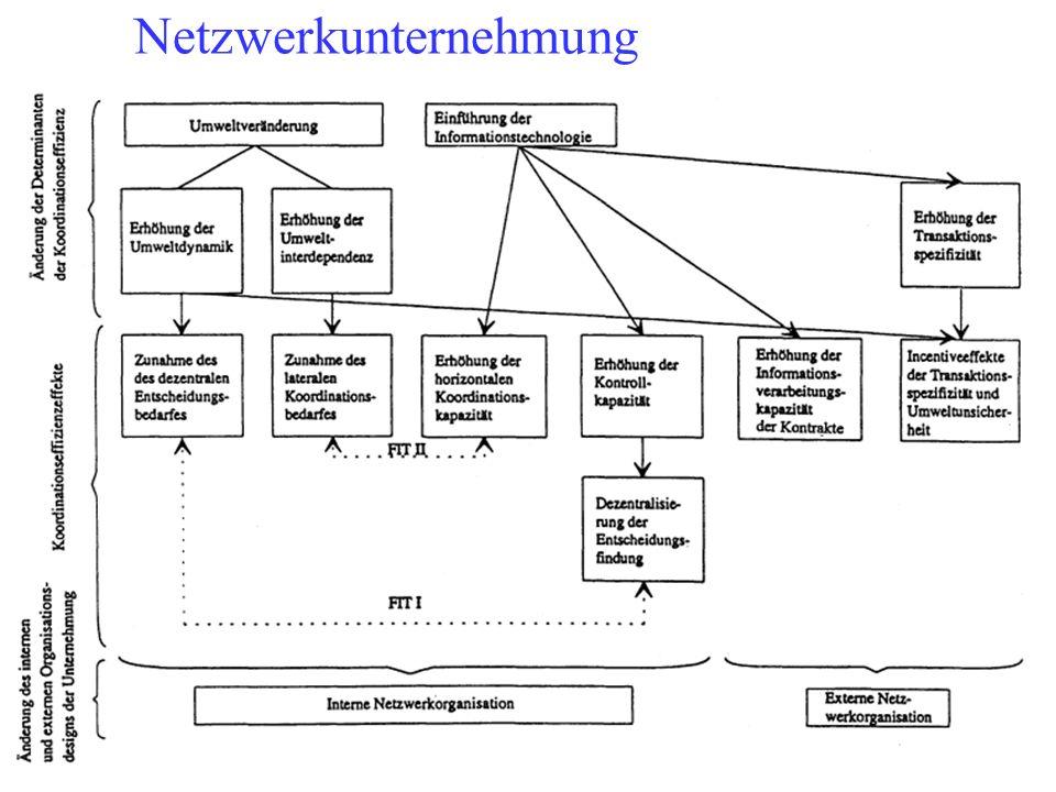 Netzwerkunternehmung